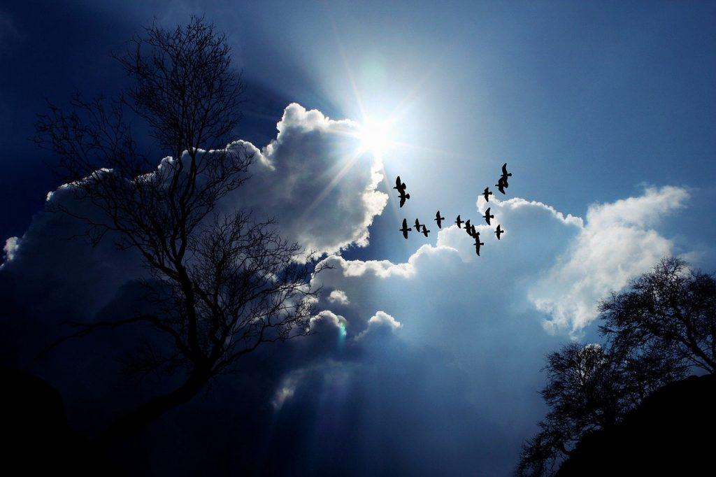 Symbolbild Himmelfahrt