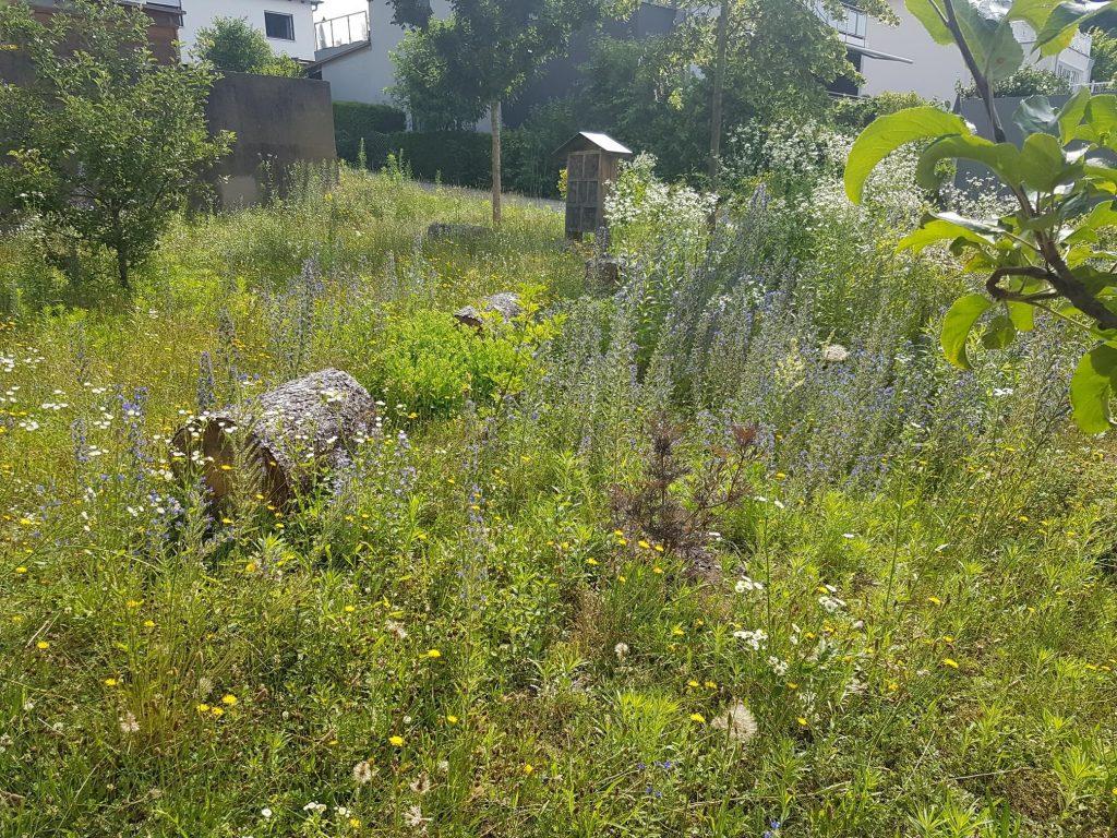 Bild des Insektenhotels mit blühenden Pflanzen davor