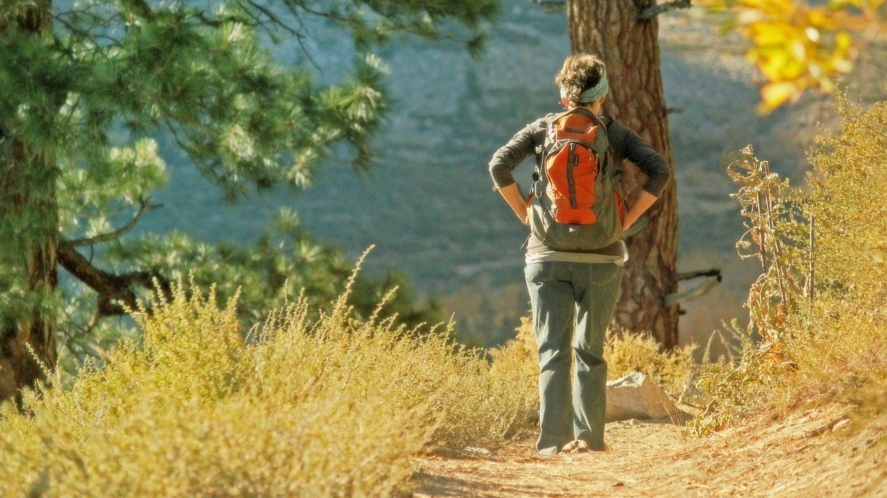 Symbolbild: Frau läuft einen Wanderweg entlang